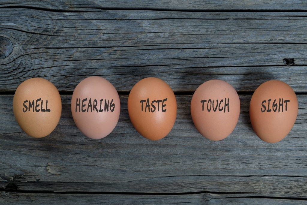 Five eggs resting on a wooden table in a line. Each has a different word written on them in black pen. These are smell, hearing, taste, touch and sight